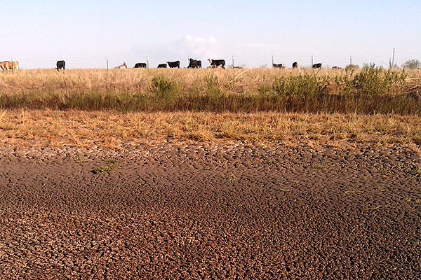 Oklahoma: Kay County Designated Natural Disaster Area from Drought