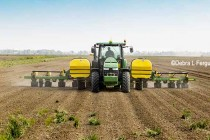 Illinois Corn, Soybeans: Dry Soils and Residual Herbicides