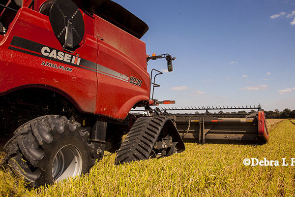 Rice: Ag Trade Mission to Brazil Offers U.S. Export Opportunities