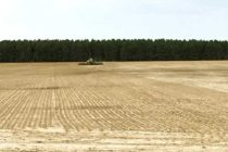 Rice: Planting Nearly Finished Through Midsouth – Horizon Ag News