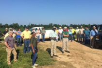 Louisiana: Row Rice, Nematodes Featured at Field Tour