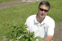 Sawyer On Crops: Did Satsumas Take A Hit From Frigid Temps? – Podcast