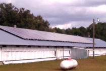 Florida Farm Business: Maximize Energy Efficiency with Free Evaluations, Cost-Share Program