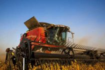 Alabama Field Reports: Corn Harvest Wrapping Up, Soybean Harvest Begins