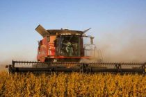Virginia Field Reports: Harvest Progressing Rapidly, 1st Frost in Some Areas