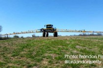 Michigan Cover Crops: Important Reminders for Herbicide-Based Termination