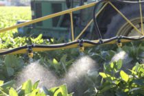 Iowa Weeds: The Cost of Resistance in Extra Herbicides