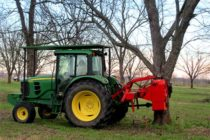 Western Region Pecans: Harvest Just Picking Up, Demand Is Good