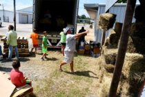 Texas Livestock: Supplies Trucked in from All Over to Relieve Hurricane Affected Ranchers