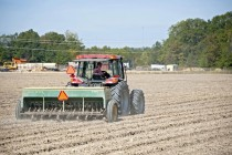 Pennsylvania Wheat: Eleventh Hour Reminders for Planting