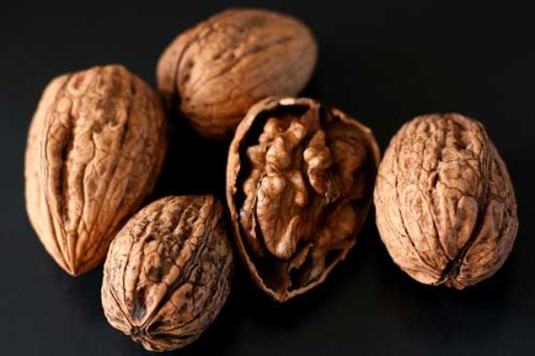 California: Lake County Walnut Update Conference, Lakeport, April 25