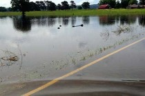 Arkansas Floods: About 25% Of One County's Crops Go Under