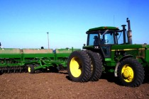 Oklahoma Winter Wheat: Planting Date and Seeding Rate Considerations