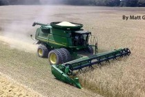 South Carolina Field Reports: Sweet Corn, Wheat Harvests Mostly Favorable