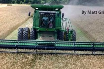 Louisiana Field Reports: Planting Nearly Finished, Wheat Harvest Picking Up